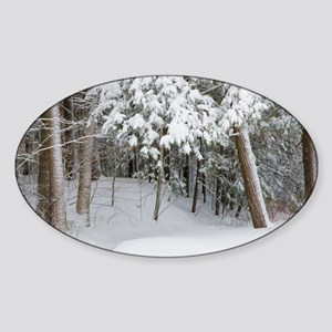 Trees covered in heavy snow Sticker