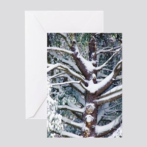 Tree branches covered by snow in winter Greeting C