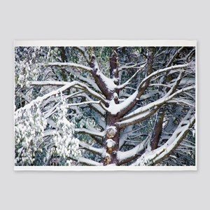 Tree branches covered by snow in winter 5'x7'Area