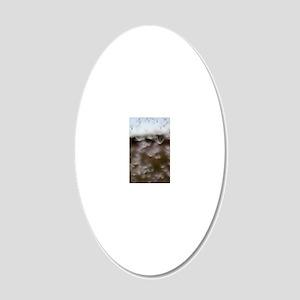 Milkweed Fluff 20x12 Oval Wall Decal
