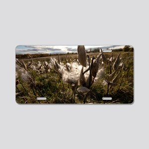 Autumn Milkweed Aluminum License Plate