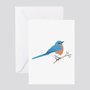 Bluebird greeting cards cafepress eastern bluebird greeting cards m4hsunfo Image collections