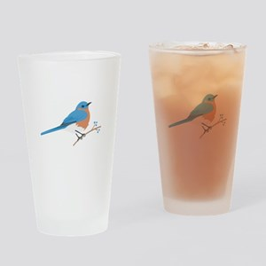Eastern Bluebird Drinking Glass