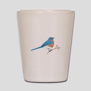 Eastern Bluebird Shot Glass