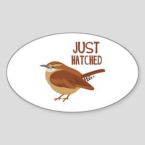 JUST HATCHED Sticker