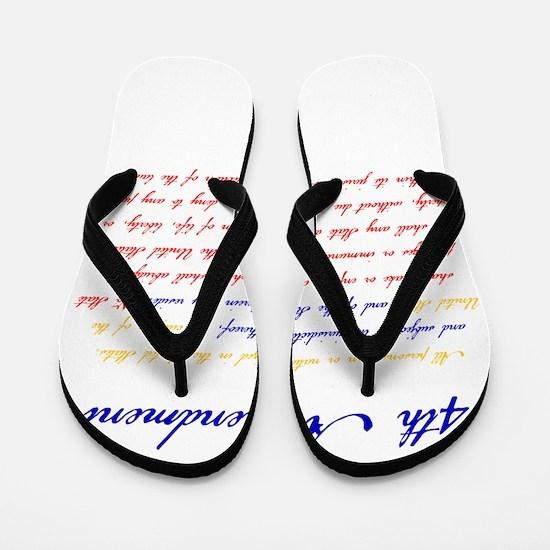 14th Amendment Flip Flops