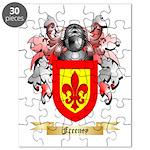 Freeney Puzzle