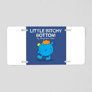 little Aluminum License Plate