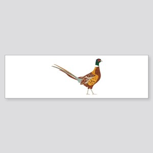Ring-Necked Pheasant Bumper Sticker
