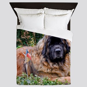 Leonberger Dog Queen Duvet