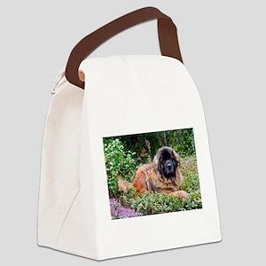 Leonberger Dog Canvas Lunch Bag