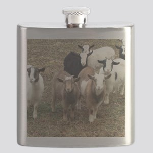 Pack of pygmy's Flask