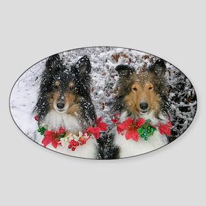 Shetland Sheepdogs in the Snow Chri Sticker (Oval)