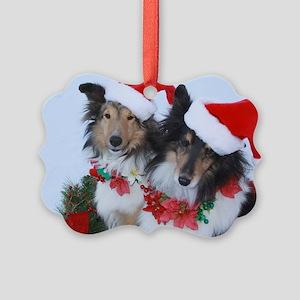 Sheltie Ornaments - CafePress