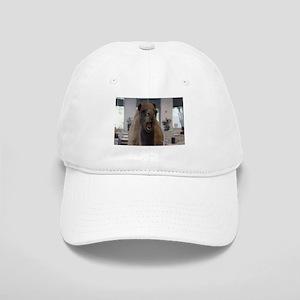 Crazy camel Baseball Cap