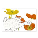 Checkers in Poppies Postcards (Package of 8)