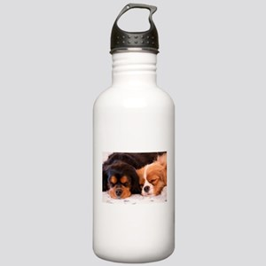 Sleeping Buddies Stainless Water Bottle 1.0L