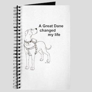 N GD Change Journal