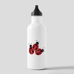 Trio of Ladybugs Water Bottle