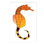 Big belly Seahorse Postcards (Package of 8)