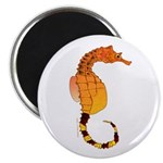 Big belly Seahorse Magnets