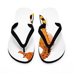 Big belly Seahorse c Flip Flops