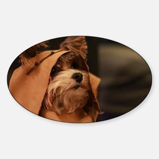Ewok Poppy Sticker (Oval)