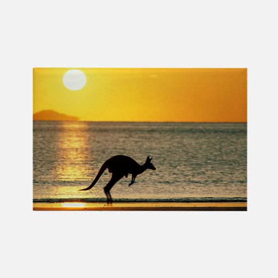 Australian Kangaroo on Beach Rectangle Magnet