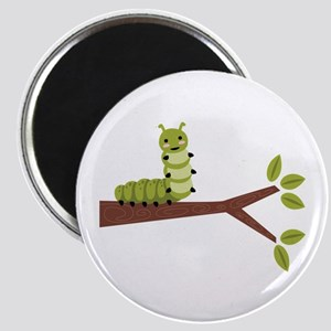 Caterpillar on Twig Magnets