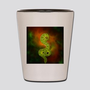 Universe Snake Shot Glass