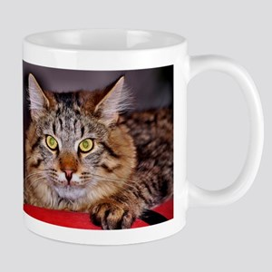 Maine-Coone Cat Mugs