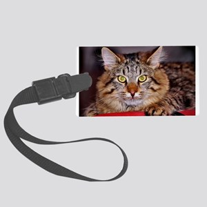 Maine-Coone Cat Large Luggage Tag
