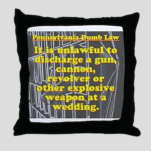 Pennsylvania Dumb Law #7 Throw Pillow