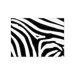 Zebra 5'x7'area Rug