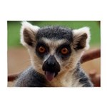 Lemur 5'x7'area Rug