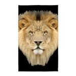 African Lion 3'x5' Area Rug