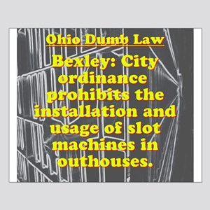 Ohio Dumb Law #8 Posters
