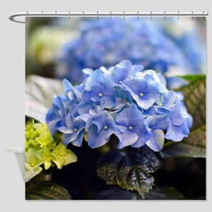 Blue hortensia Shower Curtain