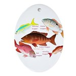 5 snappers Ornament (Oval)