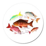 5 snappers Round Car Magnet