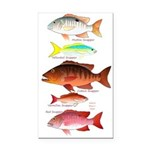 5 snappers Rectangle Car Magnet