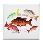 5 snappers Tile Coaster