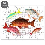 5 snappers Puzzle
