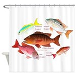 5 snappers Shower Curtain