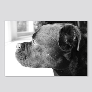 Mopey Face Tyson Postcards (Package of 8)