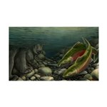 Save Our Salmon 35x21 Wall Decal