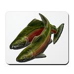 Save Our Salmon Mousepad