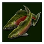"""Save Our Salmon Square Car Magnet 3"""" x 3"""""""