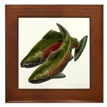 Save Our Salmon Framed Tile