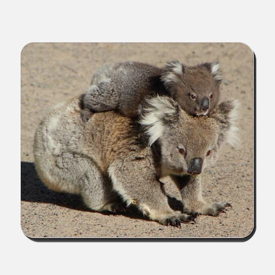 Baby Joey Koala Piggyback Ride Mousepad